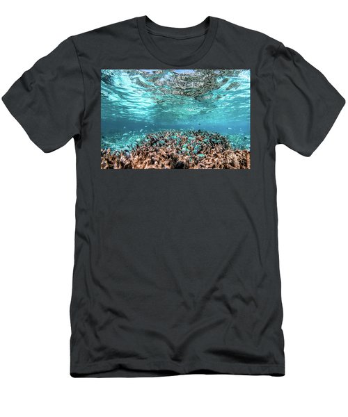 Underwater Coral Reef And Fish In Indian Ocean, Maldives. Men's T-Shirt (Athletic Fit)