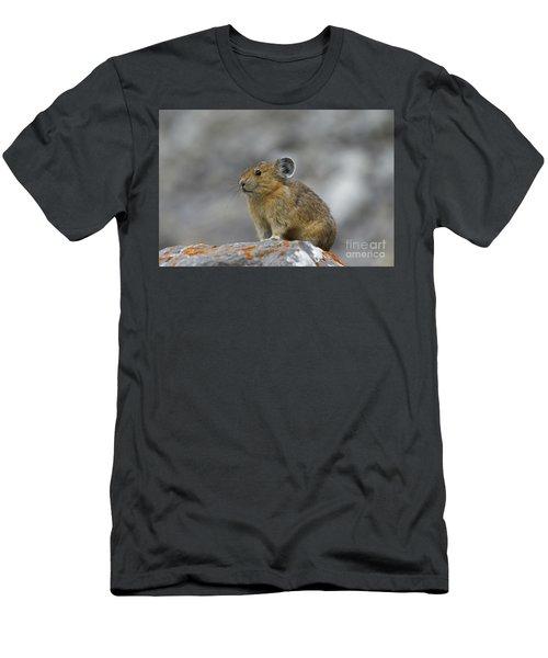 151221p238 Men's T-Shirt (Athletic Fit)