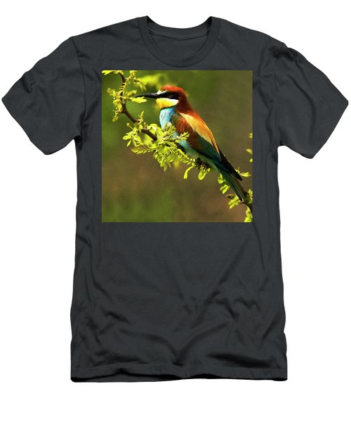 Bee Eater Men's T-Shirt (Athletic Fit)