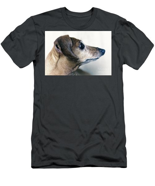 Brownie The Dachshund Men's T-Shirt (Athletic Fit)
