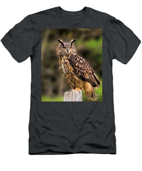 Eurasian Eagle Owl Perched On A Post Men's T-Shirt (Athletic Fit)