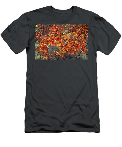 Men's T-Shirt (Slim Fit) featuring the photograph Fall Leaves by Nicholas Burningham