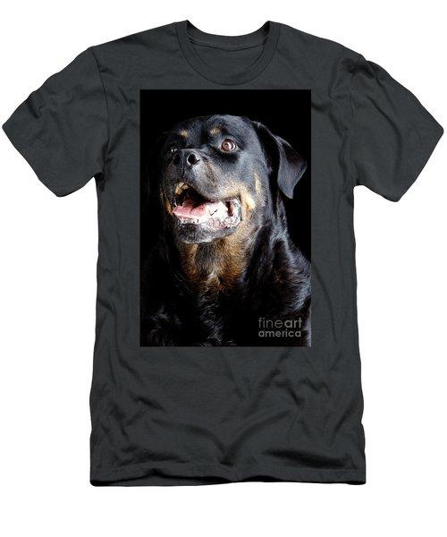 Rottweiler Dog Men's T-Shirt (Athletic Fit)