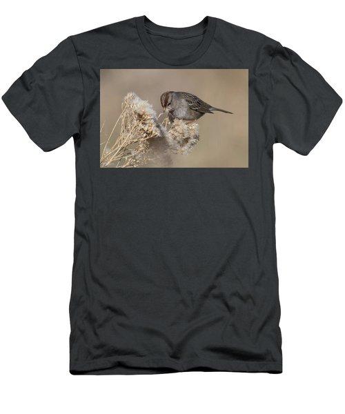 Sparrow Men's T-Shirt (Athletic Fit)