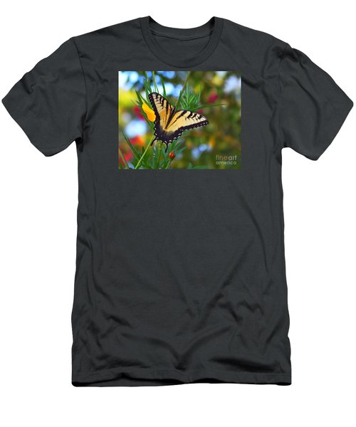 Swallowtail Butterfly Men's T-Shirt (Slim Fit) by Scott Cameron