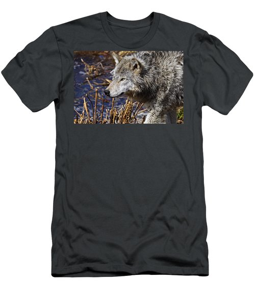 Men's T-Shirt (Slim Fit) featuring the photograph Timber Wolf by Michael Cummings