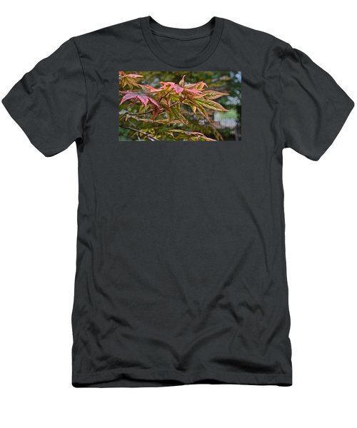 2015 Mid-september At The Garden Japanese Maple 1 Men's T-Shirt (Athletic Fit)