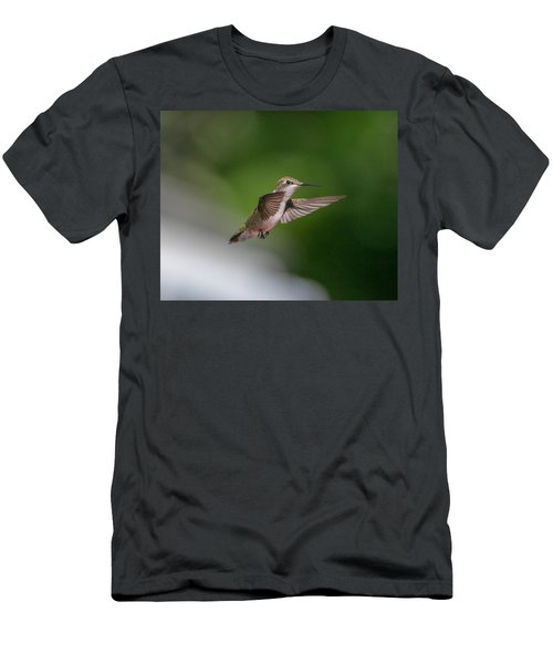 Female Ruby Throated Hummingbird Men's T-Shirt (Athletic Fit)