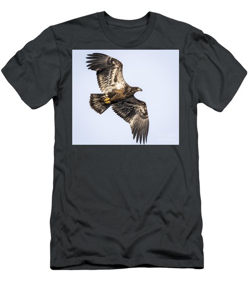 Juvenile Bald Eagle  Men's T-Shirt (Athletic Fit)