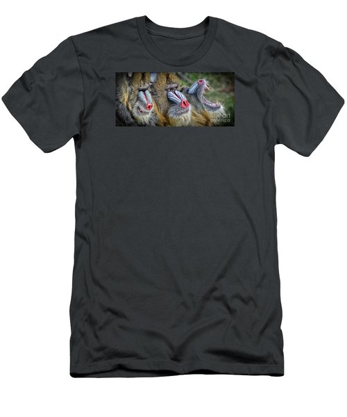 3 Male Mandrills  Men's T-Shirt (Slim Fit) by Jim Fitzpatrick