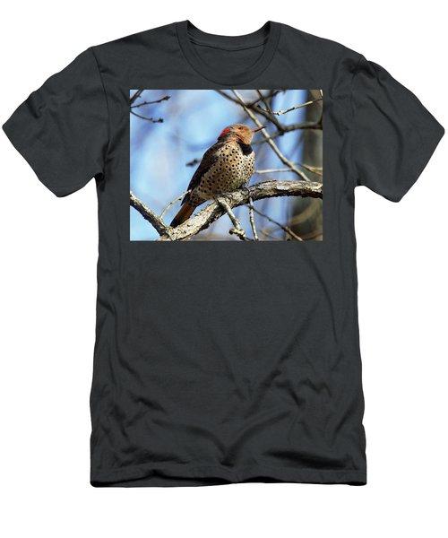 Northern Flicker Woodpecker Men's T-Shirt (Athletic Fit)