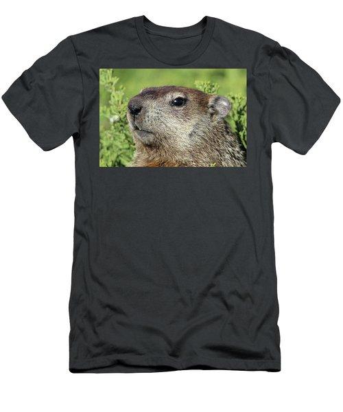 Woodchuck Calverton New York Men's T-Shirt (Slim Fit) by Bob Savage