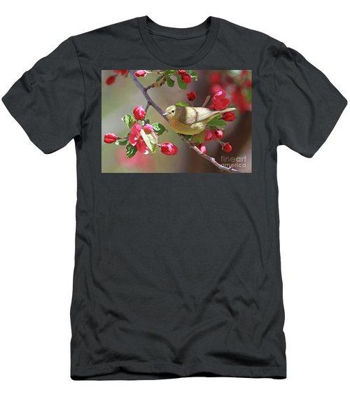 Orange-crowned Warbler Men's T-Shirt (Athletic Fit)