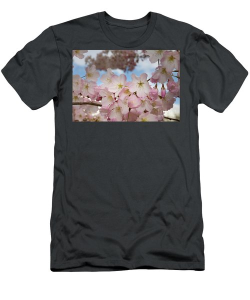 Silicon Valley Cherry Blossoms Men's T-Shirt (Athletic Fit)