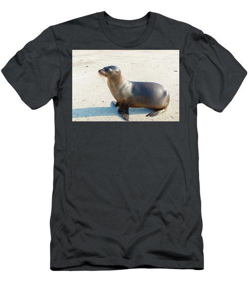 Sea Lion In Galapagos Islands Men's T-Shirt (Slim Fit) by Marek Poplawski
