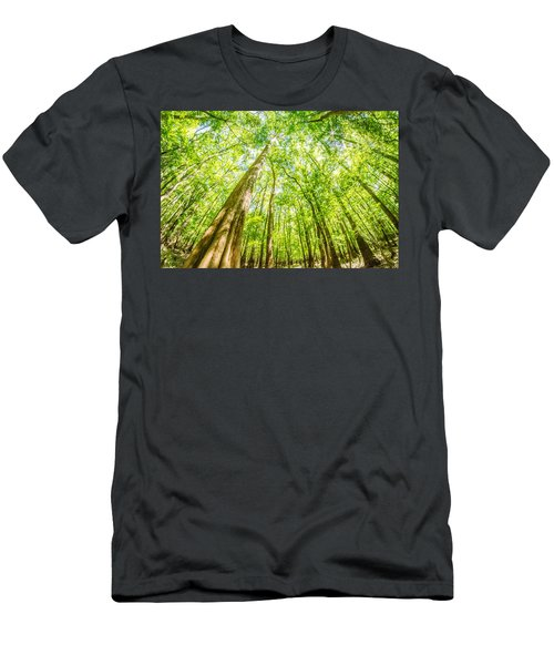 cypress forest and swamp of Congaree National Park in South Caro Men's T-Shirt (Athletic Fit)