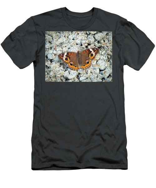 A Common Buckeye Men's T-Shirt (Athletic Fit)