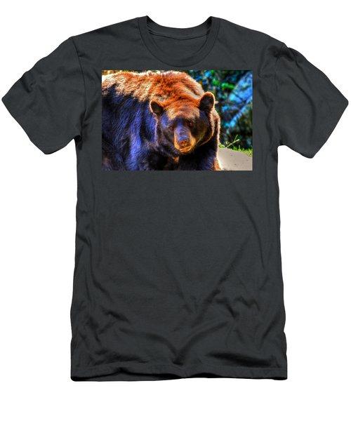 A Curious Black Bear Men's T-Shirt (Athletic Fit)