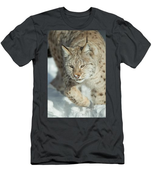 A Eurasian Lynx In Snow Men's T-Shirt (Athletic Fit)