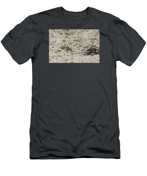 A Fiddler Crab In The Sand Men's T-Shirt (Athletic Fit)