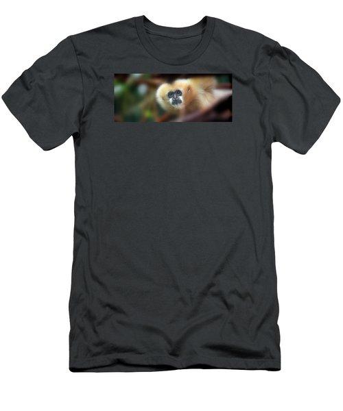 A Gibbon's Stare Men's T-Shirt (Athletic Fit)