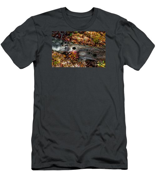 A Hole In A Log Men's T-Shirt (Athletic Fit)
