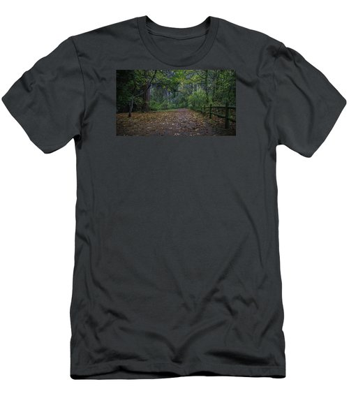 A Lincoln Park Autumn Men's T-Shirt (Athletic Fit)