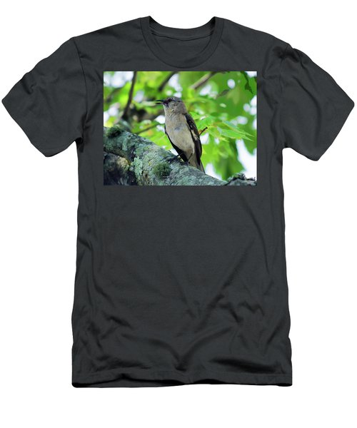 A Mockingbird Song Men's T-Shirt (Athletic Fit)