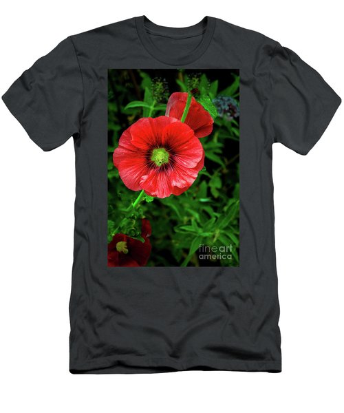 A Red Hollyhock Men's T-Shirt (Athletic Fit)