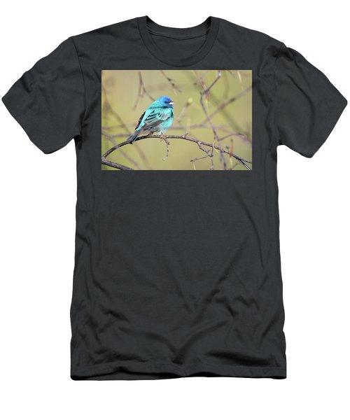 A Shiny Blue Gem Men's T-Shirt (Athletic Fit)