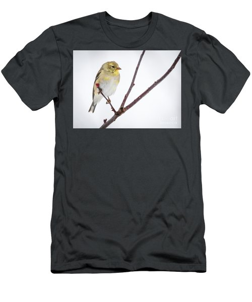 A Sign Of Spring Men's T-Shirt (Slim Fit) by Ricky L Jones