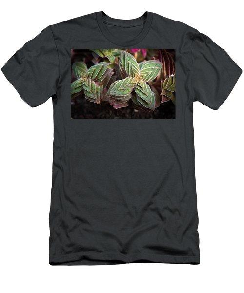Men's T-Shirt (Slim Fit) featuring the photograph A Succulent Plant by Catherine Lau