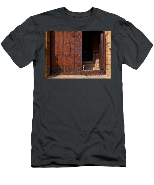 A Tabby Cat In The Doorway Men's T-Shirt (Athletic Fit)