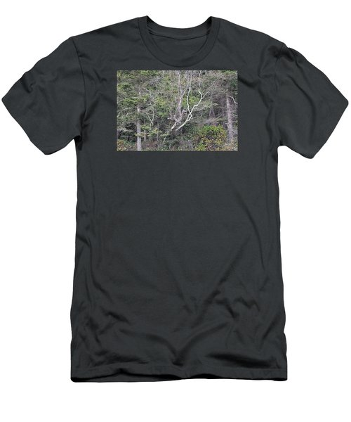 A Tanglewood Men's T-Shirt (Athletic Fit)