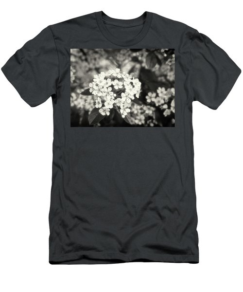A Thousand Blossoms In Sepia 3x4 Flipped Men's T-Shirt (Athletic Fit)