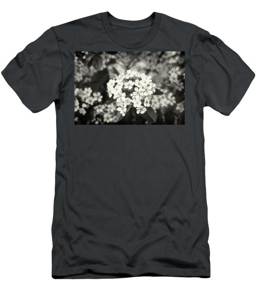 A Thousand Blossoms Sepia 3x2 Men's T-Shirt (Athletic Fit)