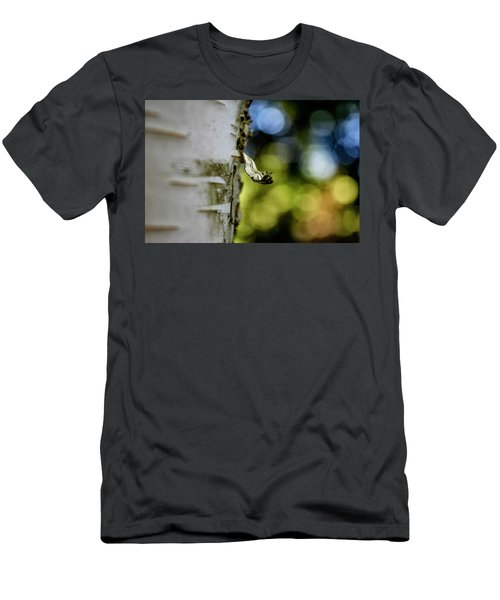A Walk In The Woods Is Good For The Soul Men's T-Shirt (Athletic Fit)