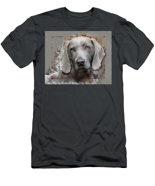 A Weimaraner Men's T-Shirt (Athletic Fit)
