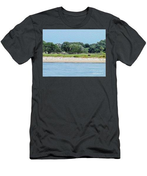 A Wild Horse Grazing Men's T-Shirt (Athletic Fit)