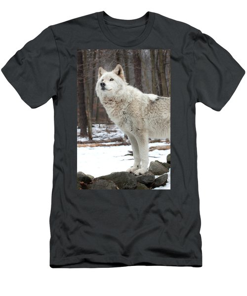 A Wolfs Modeling Pose Men's T-Shirt (Slim Fit) by Gary Slawsky