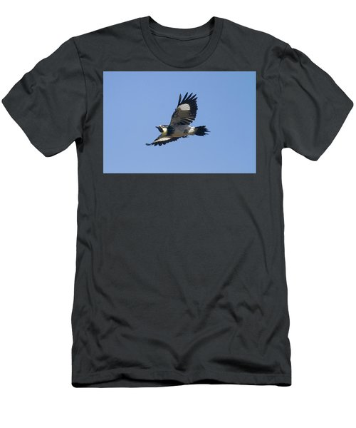Acorn Woodpecker Men's T-Shirt (Athletic Fit)