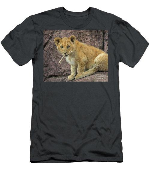 Adorable Lion Cub Men's T-Shirt (Athletic Fit)