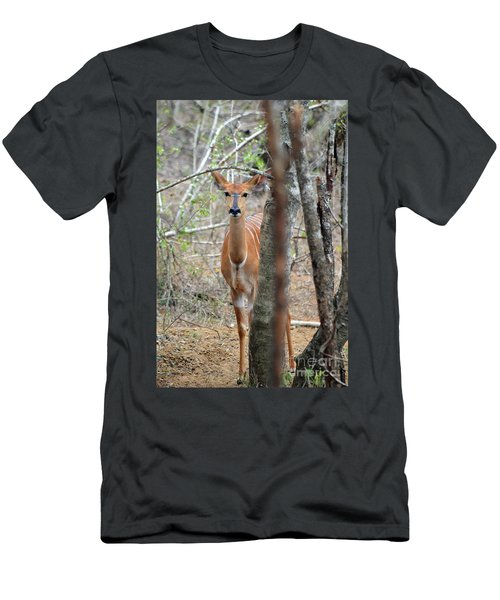 Africa Safari Bushbuck 2 Men's T-Shirt (Athletic Fit)