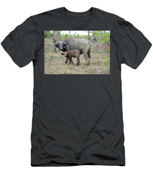 African Safari Mother And Baby Buffalo Men's T-Shirt (Slim Fit) by Eva Kaufman
