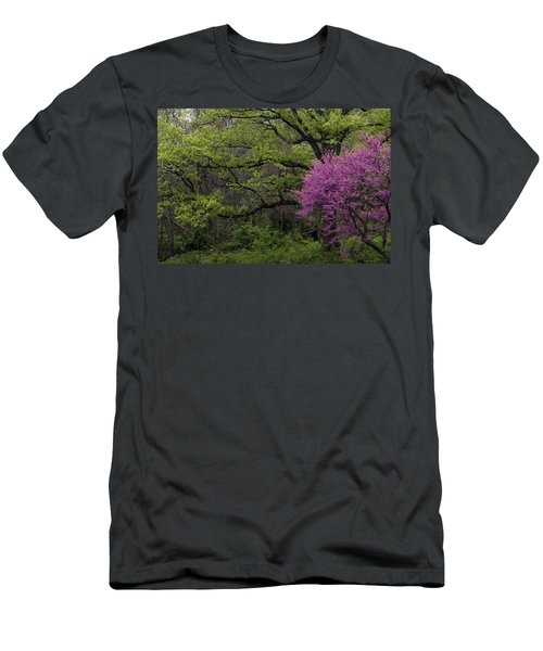 Afton Virginia Spring Red Bud Men's T-Shirt (Athletic Fit)