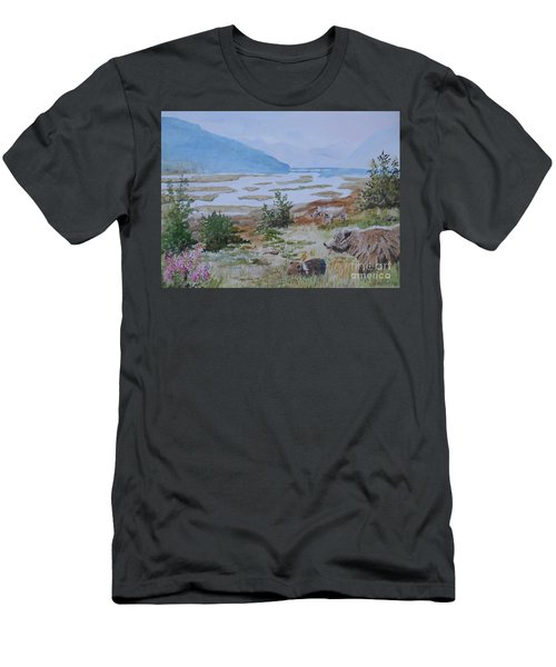 Alaska - Denali 2 Men's T-Shirt (Athletic Fit)
