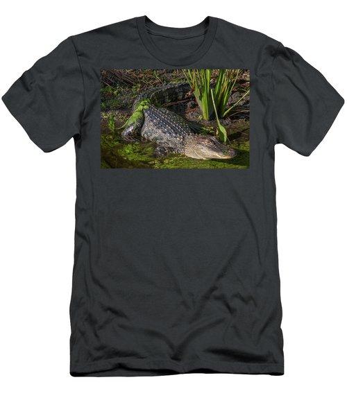 Men's T-Shirt (Slim Fit) featuring the photograph Algae Gator by Arthur Dodd