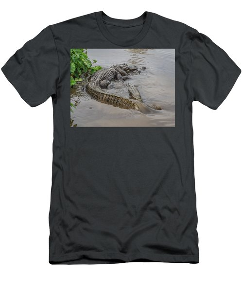Alligators Courting Men's T-Shirt (Athletic Fit)