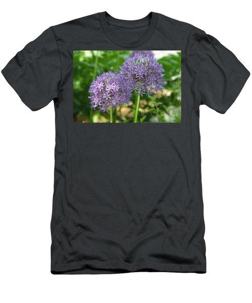 Allium Men's T-Shirt (Athletic Fit)