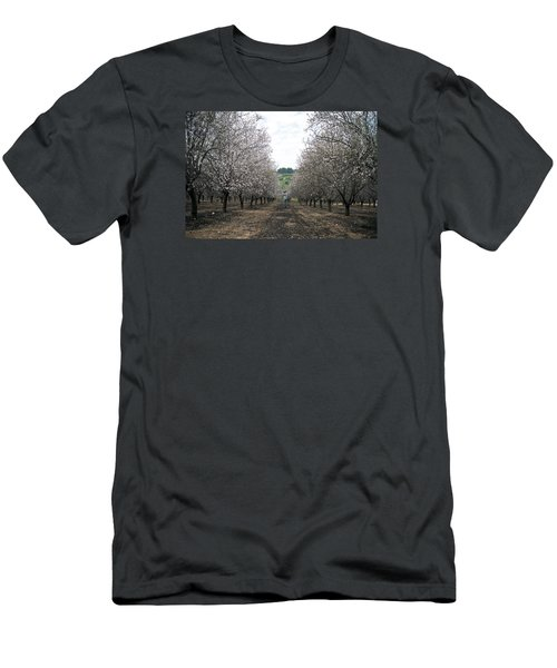 Men's T-Shirt (Slim Fit) featuring the photograph Almonds Of Lachish by Dubi Roman